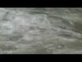 cardamoms video