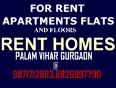 palam vihar video