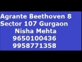 beethoven video