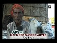 taurus video