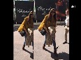 deepika padukone video