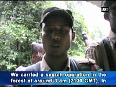 assam forest video