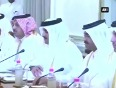 emir of qatar video
