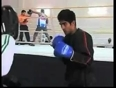 boxer vijender video