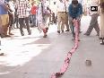 sena bhavan video