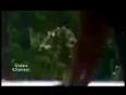 jurm video