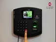 fingerprinting video
