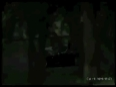 marbella video