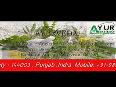 india ayurveda video
