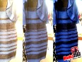 which colour is the dress that broke the internet vote ama