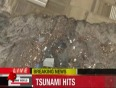 pacific tsunami video