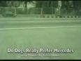 rubens video