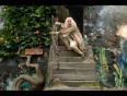 dumbledore video