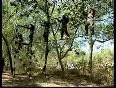 army commandos video