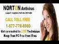 norton video