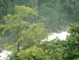 malayalee video