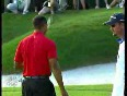 tiger woods video