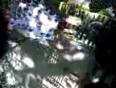 prk video