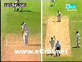 umpire rauf video