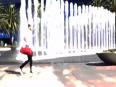 dafli video