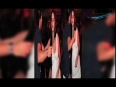 siddarth mallya video
