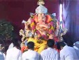 ganesh utsav video