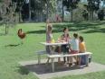 virgin australia video