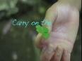 green bay video