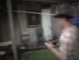 kauwboy video