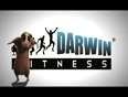 darwin video