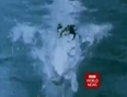 bbc world news video