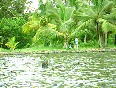 kerala home video