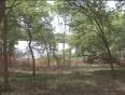 dwaraka movies video