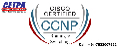 CCNP Security Training In Delhi