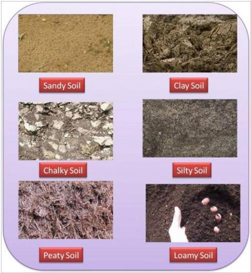 different kinds of soil pictures to pin on pinterest