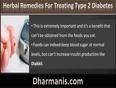 What Are The Most Effective Herbal Remedies For Treating Type 2 Diabetes