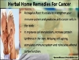 What Is Effective Herbal Home Remedies For Cancer
