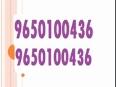 9650100436anant raj estate plaza gurgaon High speed elevator