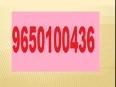 9650100436 Elan Mercado STUDIO-SERVICE APARTMENTS GURGAON 80