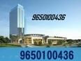 Ocus 24k          OCUS 24K        91 9650100436