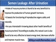Find The Best Treatment For Semen Leakage After Urination