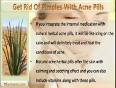 Are Herbal Acne Pills Good To Get Rid Of Pimples