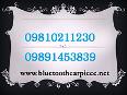 Bluetooth earpiece in mumbai,09810211230