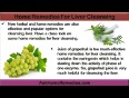 Any alternative natural supplements to cleanse liver