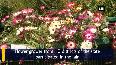 Government organises flower fair in Srinagar