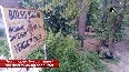 Security forces continue search operation in J&amp K's Kulgam