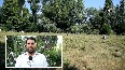 Aromatic plant cultivation offers employment opportunities in JK