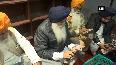 SAD president Sukhbir Singh Badal, Harsimrat Kaur perform seva at Golden Temple