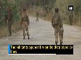 Pulwama terror attack 2 policemen, 2 CRPF jawans injured