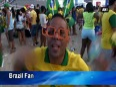 Fifa world cup 2014 brazil fans